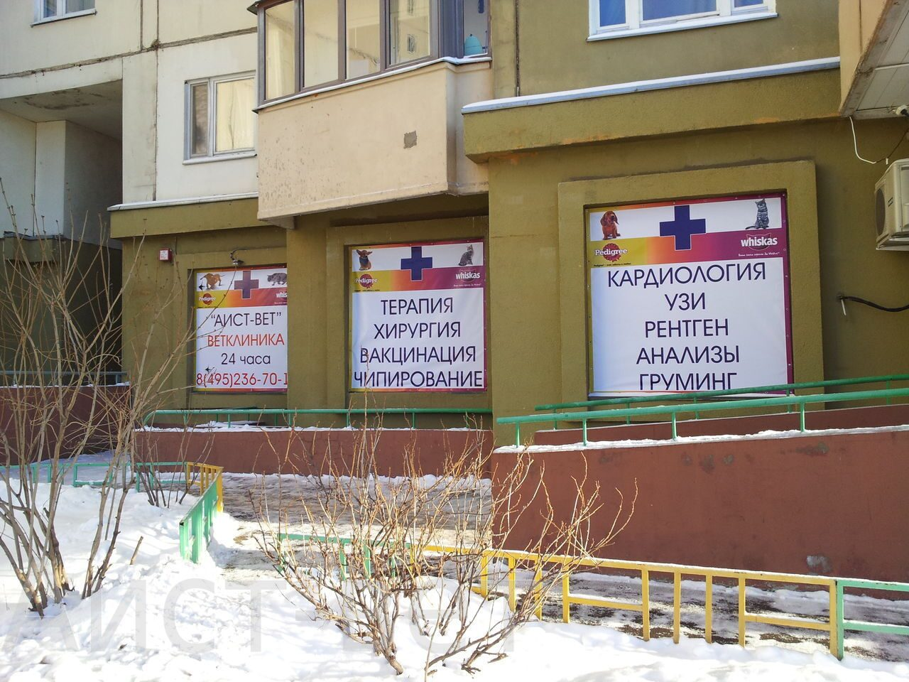 Центр в Бутово - Ветклиники - Близнецы